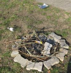 feuerstelle-03-2012